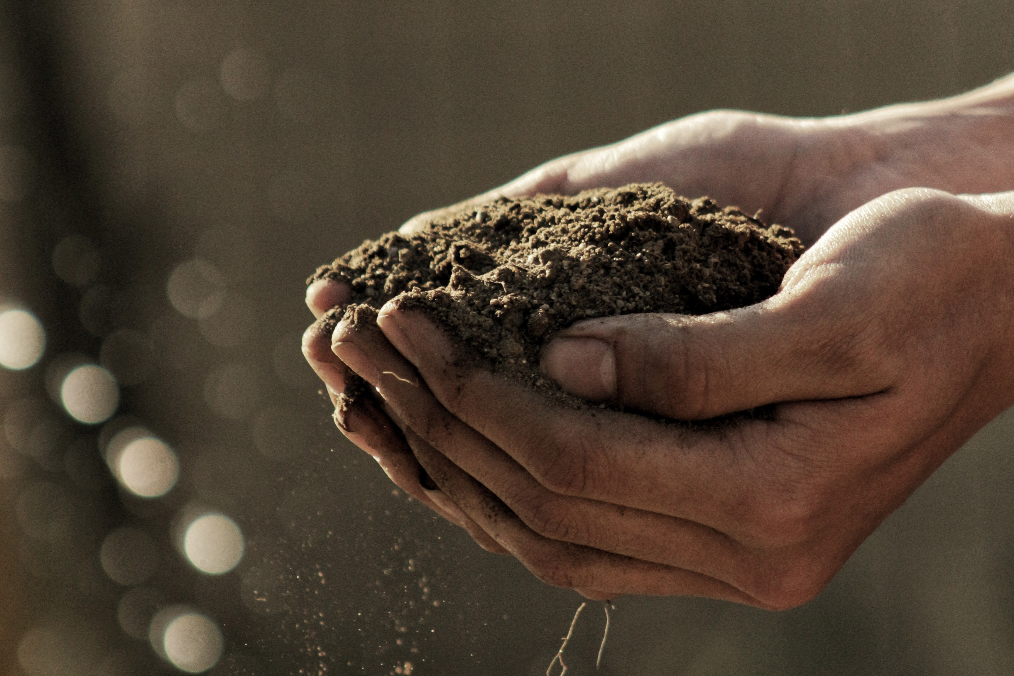 hand holding earth soil
