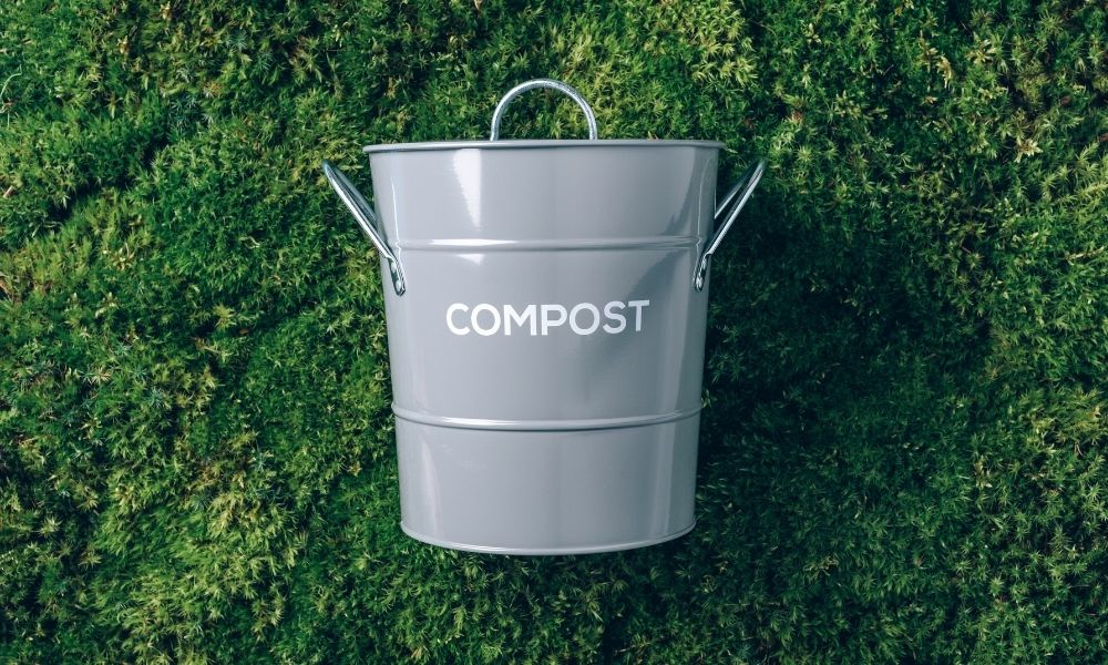 The Benefits of Using Compost Tea