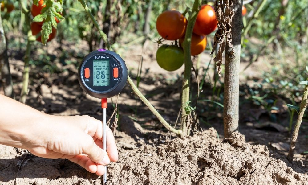 The Importance of Soil Moisture Monitoring
