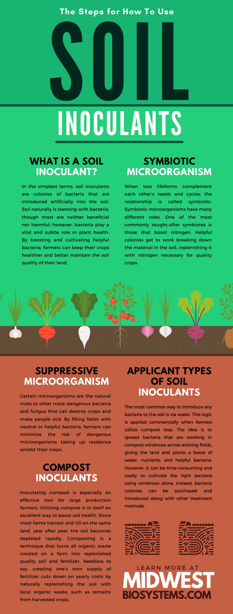 The Steps for How To Use Soil Inoculants