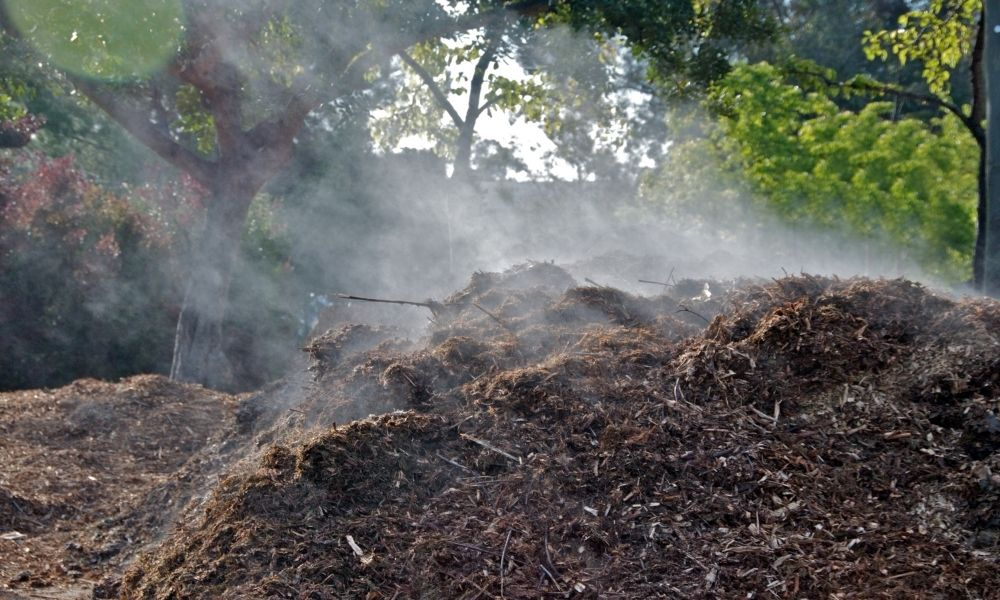 How To Maintain Compost Pile Moisture