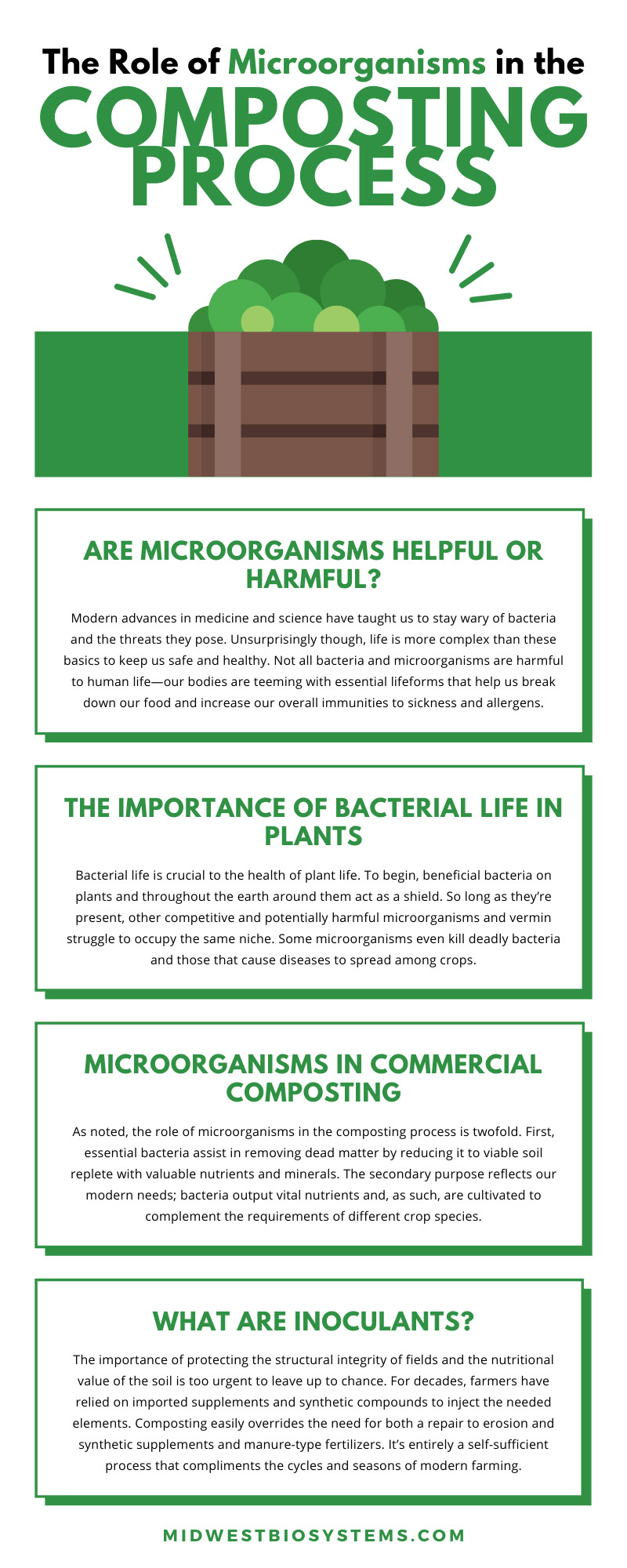 The Role of Microorganisms in the Composting Process