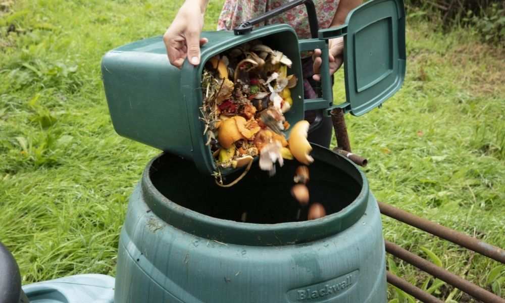 How To Improve the Smell of Your Compost
